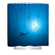 Diver And School Of Fish In Blue Water Shower Curtain