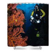 Diver And Sea Fans, Fiji Shower Curtain