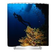 Diver And Soft Coral, Fiji Shower Curtain