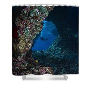 Diver At Boo Windows In Raja Ampat Shower Curtain