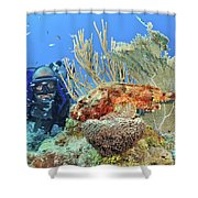 Diver Looks At Scorpionfish Shower Curtain