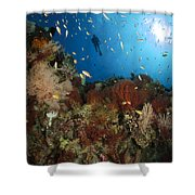 Diver Over Reef Seascape, Indonesia Shower Curtain