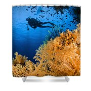 Diver Swimms Above Soft Coral, Fiji Shower Curtain