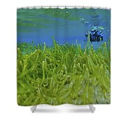 Diver With Fluorescent Green Algae Shower Curtain