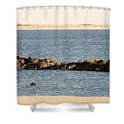 Diving Coney Island Shower Curtain