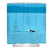 Diving For Dinner Shower Curtain