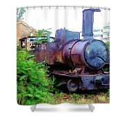 Do-00504 Train In Mar Mickael Shower Curtain
