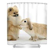 Dog And Rabbit Shower Curtain
