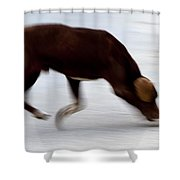 Dog In Motion Shower Curtain