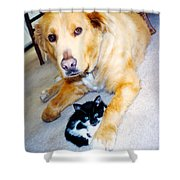 Dog Named Forest And Kitten Named Princess Shower Curtain