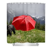 Dog On The Top Of A Mountain Shower Curtain