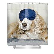 Dog With A Sleep Mask Shower Curtain