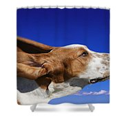 Dog With Ears In The Wind Shower Curtain