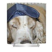 Dog With Sleep Mask Shower Curtain