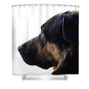 Doggie Daydreams Shower Curtain