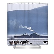 Dogs Play Outside In Rinchenlhumbe Shower Curtain