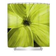 Dogwood Bloom Yellow Shower Curtain