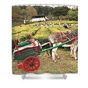Donkey And Tea Gardens Shower Curtain