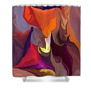 Don't Think About Elephants Shower Curtain