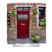 Door And Windows Shower Curtain