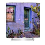 Doorway 5 Shower Curtain
