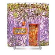 Doorway 9 Shower Curtain