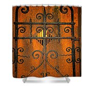 Doorway To Death Shower Curtain by Paul Ward