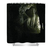 Doorway To Wonderland Shower Curtain