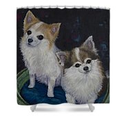 Dot And Dolly Shower Curtain