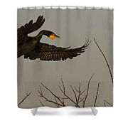 Double Crested Cormorant Coming Shower Curtain