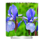 Double Iris Shower Curtain