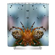 Double Spider Shower Curtain