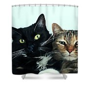 Double Trouble 1 Shower Curtain