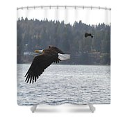 Double Trouble Eagles Shower Curtain