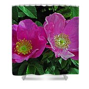 Double Wild Rose Shower Curtain