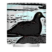 Dove At The Beach Shower Curtain