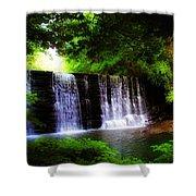 Dove Lake Falls Shower Curtain