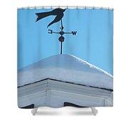 Dove Weather Vane Shower Curtain
