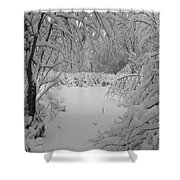 Down The Path Shower Curtain