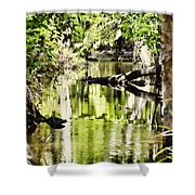 Downstream Reflections Shower Curtain
