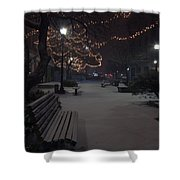Downtown Winter Shower Curtain