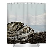 Dozing With Mount Baker Shower Curtain