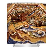 Dragon Art Shower Curtain