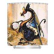 Dragon At Work Shower Curtain