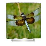 Dragon Fly Grass Shower Curtain