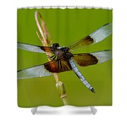 Dragon Fly Green Shower Curtain