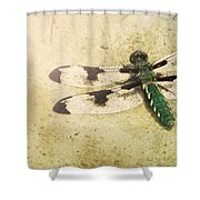 Dragon In The Sun Shower Curtain