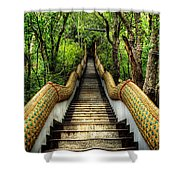 Dragon Steps Shower Curtain