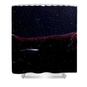 Dragonfish Shower Curtain