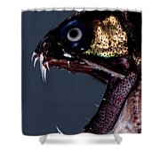 Dragonfish Mouth Shower Curtain